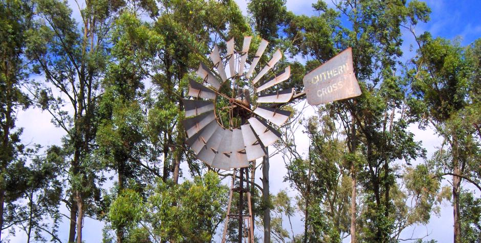 Wondaree Macadamias North Queensland