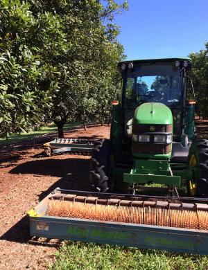 Wondaree Macadamias Tractor